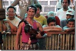 Путешествие по Филиппинам. Таклобан, петушиные бои