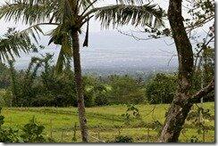 Самостоятельное путешестие. Природа на Филиппинах. Данао