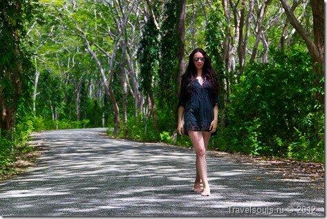красивая девушка в лесу