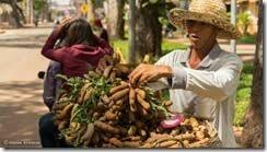 Камбоджа, СиемРеап, Сиемрип, улица, торговец, еда,
